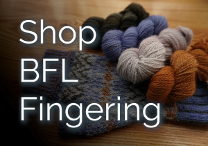 Browse all colours of fingering weight BFL